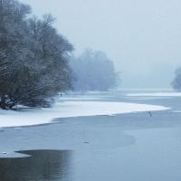rhein bei au am Rhein im winter
