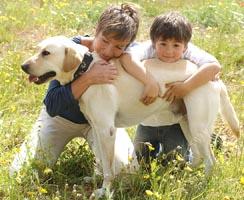 Mutter mit Kind umarmen ihren Hund auf einer Wiese